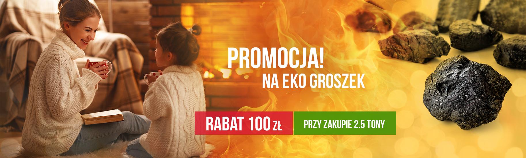ekogroszek_baner